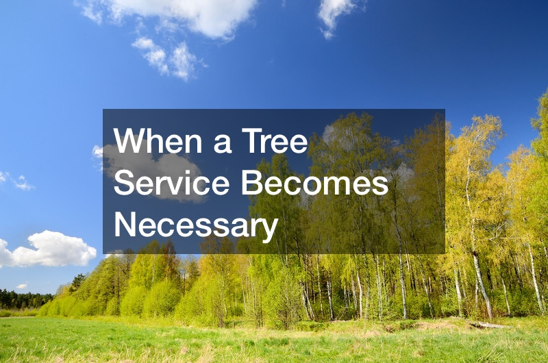 When a Tree Service Becomes Necessary