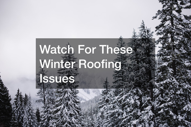 Watch For These Winter Roofing Issues